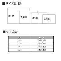 和紙のし紙熨斗印刷略式赤棒熨斗紙印刷名前入り名入れ記念品粗品寸志20枚A4サイズ送料無料