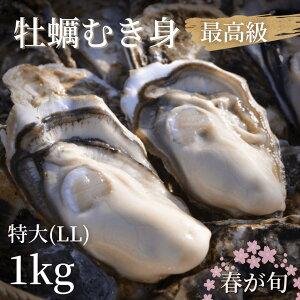 【最高級】大粒なま牡蠣(加熱用むき身)特大LL1kg(20〜25粒)産地直送!岩手県陸前高田産 大和田家のカキ【6月いっぱいで出荷終了】