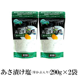 あさ漬け塩 芽かぶ入り 290g×2 メール便 送料無料 塩 ソルト 調味料 芽かぶ入り 焼塩 魚介料理 和食 肉料理 おにぎり 浅漬け パスタ 小分け こわけや