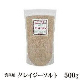 日本緑茶センター クレイジーソルト 500g メール便 送料無料 詰替え用 無添加 ハーブ スパイス ソルト 調味料 こわけや