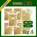 大分県産大豆 1kg×5〔チャック付〕 規格外大豆《大粒》