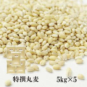 特選丸麦 5kg×5〔チャック付〕/国産 宅配便 送料無料 チャック付 国産 特選 大麦 食物繊維 βグルカン こわけや