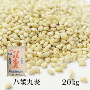 石橋工業 八媛丸麦 20kg/国産 宅配便 国産 特選 大麦 食物繊維 βグルカン こわけや