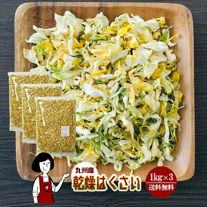 乾燥はくさい 1kg×3/九州産 乾燥野菜 白菜 宅配便 送料無料 九州産 国産 ボイル済み 保存食 時間短縮 スープ こわけや
