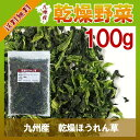 乾燥ほうれん草 100g〔チャック付〕/九州産 乾燥野菜 ホウレン草
