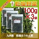 乾燥ほうれん草 100g×3〔チャック付〕/九州産 乾燥野菜 ホウレン草