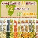 乾燥野菜11種類から2袋選べるセット/オマケ付