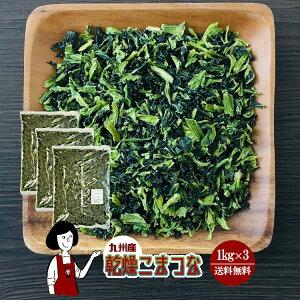 乾燥こまつな 1kg×3/九州産 乾燥野菜 小松菜 宅配便 送料無料 九州産 国産 ボイル済み 保存食 時間短縮 スープ こわけや