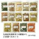 九州産乾燥野菜14種類から2袋選べるセット/オマケ付メール便 送料無料 チャック付 九州産 国産 ボイル済み 保存食 時…