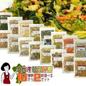 九州産乾燥野菜16種類から2袋(100g×2)選べるセット/オマケ付メール便 送料無料 チャック付 九州産 国産 ボイル済み 保存食 時間短縮 ミックス スープ 小分け こわけや