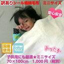【訳あり】あす楽 シール織 綿毛布 ミニサイズ 冷え防止 こうやブランケット 日本製 天然素材は身体にやさしい ポイント消化 お昼寝用