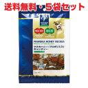 ★送料無料・5袋セット★プロポリス&マヌカハニーMGO400+キャンディー 100g