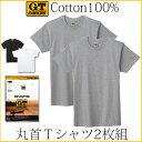 GTホーキンス 綿100%半袖丸首Tシャツ2枚組!グンゼ