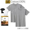 GTホーキンス 綿100%半袖丸首Tシャツ2枚組!グンゼ 01-HK10132