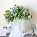 Kahler(ケーラー)ハンマースホイフラワーベース Mサイズホワイト 花瓶 陶器日本正規代理店品