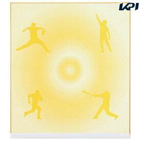 【店内最大2000円クーポン対象】ゼット ZETT 野球アクセサリー 記念色紙(一般サイズ) BCP1