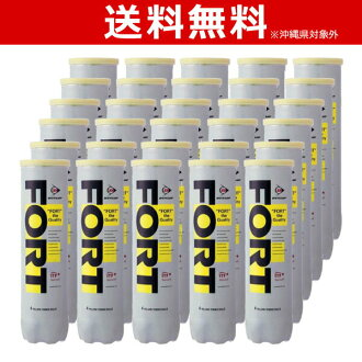 """It is """"one (30 cans /120 ball) tennis ball [with four] FORT"""" (Fort) DUNLOP (Dunlop)"""