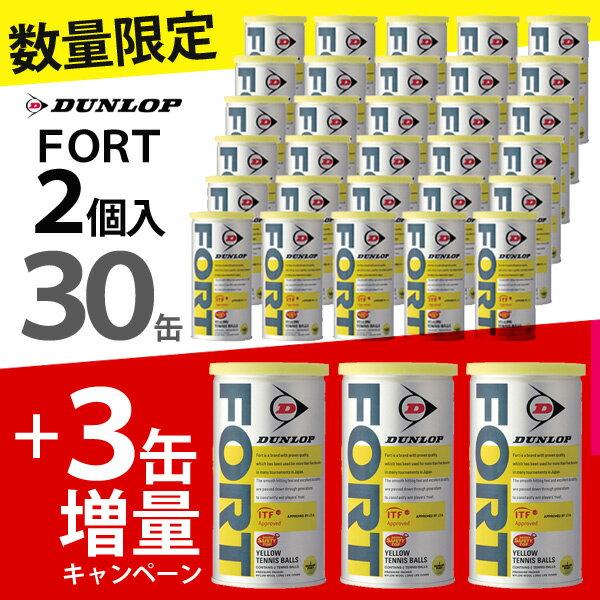 「増量キャンペーン」DUNLOP(ダンロップ)FORT(フォート)[2個入]1箱(30缶+3缶=33缶/66球)テニスボール