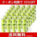 【10%OFFクーポン対象】DUNLOP(ダンロップ)プラクティス1箱(30缶=120球)テニスボール
