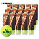 【新パッケージ】DUNLOP(ダンロップ)「St.JAMES(セントジェームス)(15缶/60球)」テニスボール