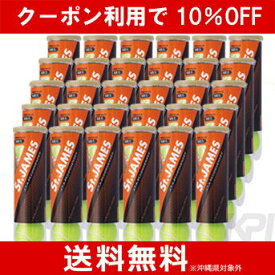 【10%OFFクーポン対象】【2箱セット】St.JAMES(セントジェームス)(30缶/120球)テニスボール