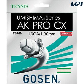 GOSEN (go sen) TS760 tennis gut (strings) fs3gm
