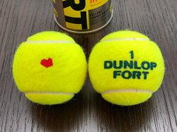 DUNLOP(ダンロップ)FORT(フォート)[2個入]1箱(30缶/60球)テニスボール【smtb-k】【kb】
