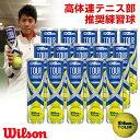 『全品10%OFFクーポン対象』「あす楽対応」Wilson(ウイルソン)「TOUR STANDARD(ツアー・スタンダード) 1箱(15缶)…