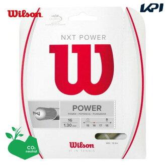 Wilson(윌슨) 「NXT POWER 16 WRZ941600」경식 테니스 스트링(가트)[고양이 POS가능]