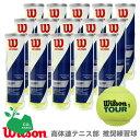 【10%OFFクーポン対象】Wilson(ウイルソン)「TOUR STANDARD(ツアー・スタンダード) 1箱(15缶) WRT103800」テニス…