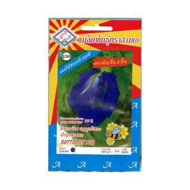 バタフライピーの種 アンチャン チョウマメ 蝶豆 【送料無料】 【タイ野菜の種】
