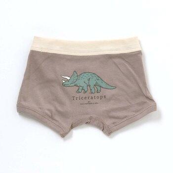 【新作】Ampersand(アンパサンド)恐竜モチーフくすみカラーボクサーパンツ下着100cm110cm120cm130cm140cm肌着小学生キッズ男児ジュニアこども男の子高学年エフオー