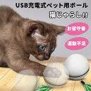 お留守ニャン お留守ワン ペット用 USB充電 式 猫じゃらし付 ペット用ボール 猫 犬 ペット 自動 直径7cm ボール おも…
