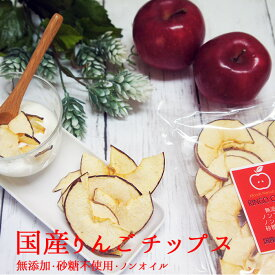 りんごチップス 20g×2袋 メール便 ドライフルーツ 砂糖不使用 無添加アップル りんご ドライフルーツ 林檎 ノンオイル ノンフライ ポイント消化 デトックスウォーター フォンダンウォーター フルーツティー 5298 キャッシュレス ホワイトデー