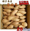 【安納芋】種子島産甘蜜芋安納芋こがね(もみじ)プチサイズ5kg入り芋類4.6以上の信頼