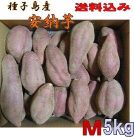 予約1割増量 秀品安納芋 種子島産 Mサイズ5kg送料無料【 北海道・東北・沖縄別途送料】蜜芋