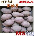 【安納芋】種子島産蜜芋安納芋選別済みMSサイズ5kg