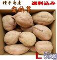 【安納芋】種子島蜜芋安納芋選別済みLサイズ5kg種子島直送