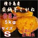 予約1割増量 2口以上購入で送料無料【北海道・東北別途送料となります】【安納芋】長期熟成種子島産甘蜜芋安納芋こがね(もみじ)Sサイズ5kg入り