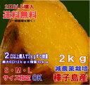 2口以上で送料無料S・M・Lサイズ指定OK 中園ファームの蜜芋安納芋2kg 2口購入で2kgおまけ 種子島産【2口で2kg増量・3…