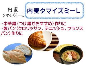 内麦 タマイズミ -L 準強力粉 1kg / 中華麺用粉 製パン用粉 ホームベーカリー 1キロ