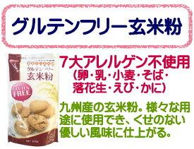グルテンフリー 玄米粉 300g 熊本製粉 / 製菓 ホットケーキ スイーツ mix粉 ミックス粉 グルテンフリーホットケーキ MIX