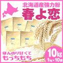 【送料無料】 春よ恋 10kg ( 1kg×10袋 ) 強力粉 パン用小麦粉 / 送料無料 / 北海道産 100% 小麦粉 国産 / 天然酵母…