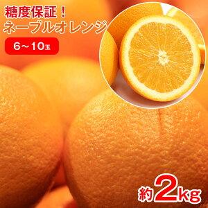 【2021/順次配送中】 送料無料 オレンジ アメリカ産 ネーブルオレンジ オレンジ ネーブル 約 2kg 6玉 〜 10玉 みかん ご家庭用 みかん ご自宅用 加工用 果物 くだもの フルーツ 母の日 ギフト 訳