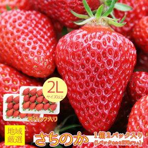 【2020/予約受付中】地域厳選 いちご イチゴ さちのか 幸の果 苺 秀品 特大 大粒 2L 以上 1箱 2パック入り 270g 2パック 秀品 ご家庭用 いちご ケーキ チョコ ギフト お歳暮 誕生日 ギフト プレゼ