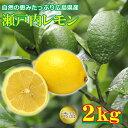 【2020/順次配送中】送料無料 広島県産 瀬戸内レモン 2kg レモン 国産 国産レモン レモン果汁 ご家庭用 レモン ノーワ…