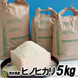 ヒノヒカリ米 5kg【送料無料】熊本産 美味しい お米