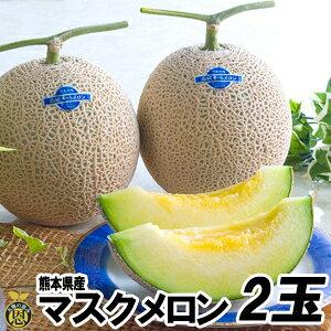 マスクメロン2玉【送料無料】熊本県産 高級メロン 贈答 ギフト