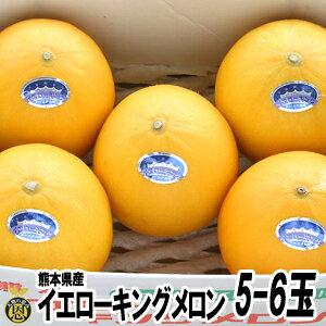 イエローキングメロン5-6玉【送料無料】熊本県産