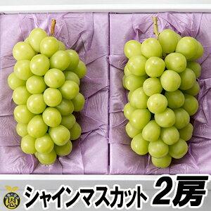 シャインマスカット 2房【送料無料】贈答品 ギフト 高級ぶどう 種なし